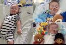 Il bambino Alfie Evans e le autentiche cure palliative