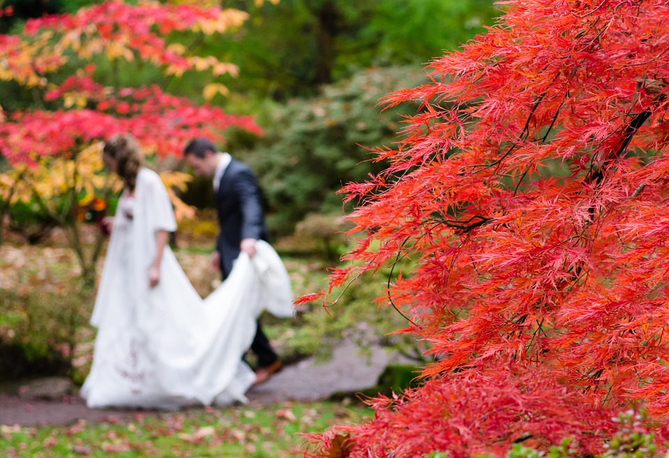 wedding-1017459_960_720