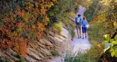 Le sfide della pianificazione familiare naturale portano alla virtù FOTO IN EVIDENZA